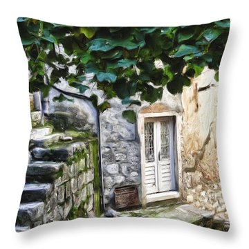 Back Alley Living Throw Pillow by Janet Fikar