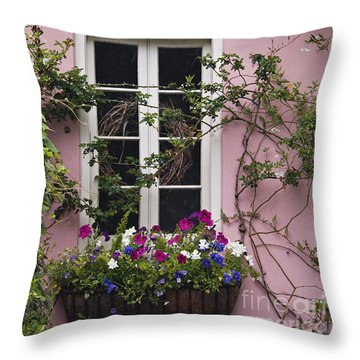 Back Alley Window Box - D001793 Throw Pillow