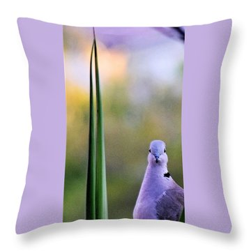 Back At Cha Throw Pillow by John Glass