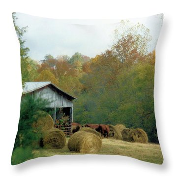 Back At The Barn Throw Pillow by Jan Amiss Photography