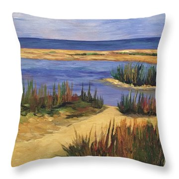 Back Bay Beach Throw Pillow