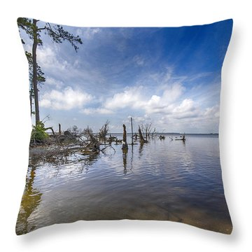 Back Bay View Throw Pillow by Alan Raasch
