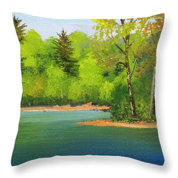 Throw Pillow featuring the painting Back Country Pond by Frank Wilson