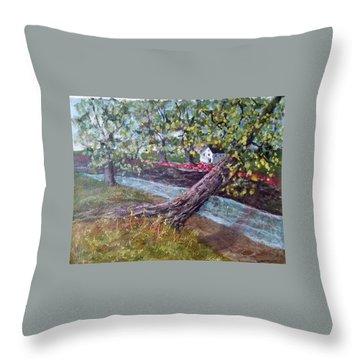 Back Creek Throw Pillow