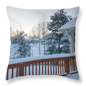 Winter Deck Throw Pillow