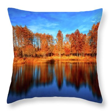 Back From The Edge Throw Pillow