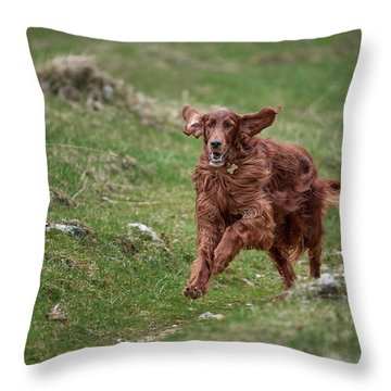 Back In Game Throw Pillow