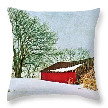 Back In The Day Throw Pillow by Nikolyn McDonald