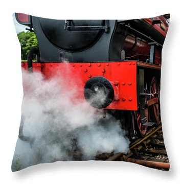 Throw Pillow featuring the photograph Back It Up by Nick Bywater