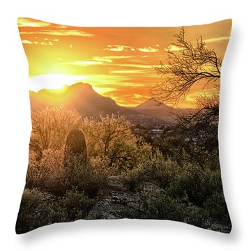 Back Lit Throw Pillow