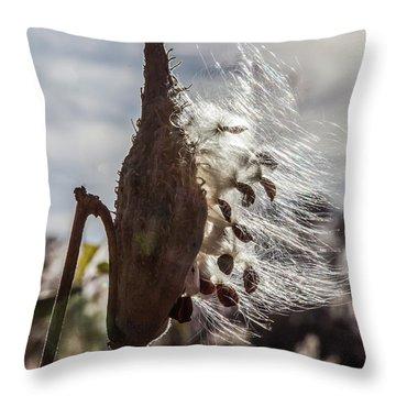 Back Lit Milkweed Pod Throw Pillow