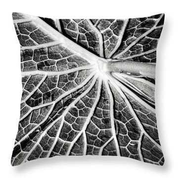 Back Of A Water Lily Pad Throw Pillow