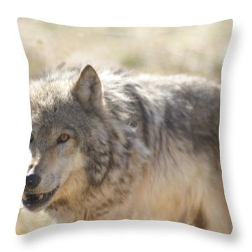 Throw Pillow featuring the digital art Back Off Buddy by Gary Baird