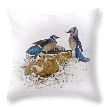 Back Off Throw Pillow by MTBobbins Photography