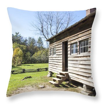 Back Porch Throw Pillow