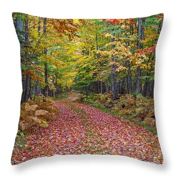 Back Road Color Tour  Throw Pillow