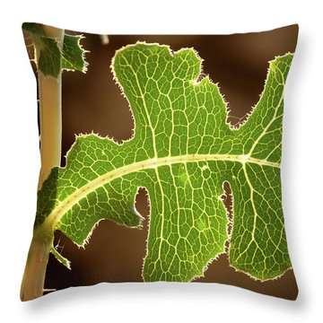 Back Side Light On A Leaf At Sunset Throw Pillow by Yoel Koskas