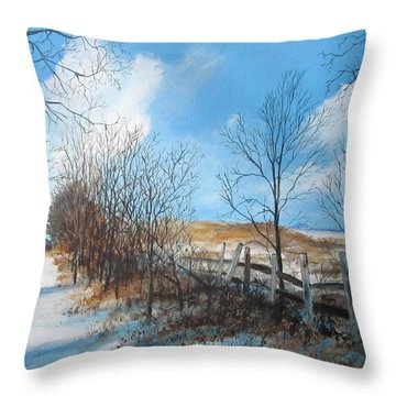 Back Slope Throw Pillow