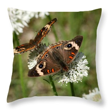 Back To Back Butterflies Throw Pillow by Sheila Brown