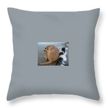 Back To Back Throw Pillow by Val Oconnor