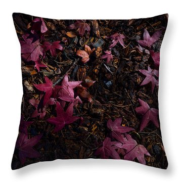 Back To The Earth Throw Pillow