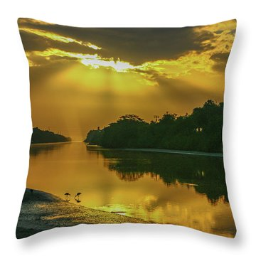Back Up Reflection Throw Pillow
