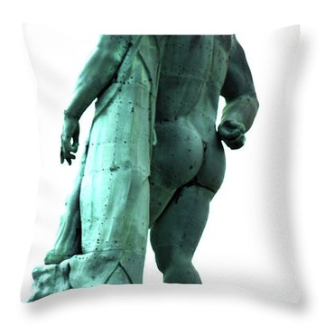 Back View From Great Hercules Throw Pillow