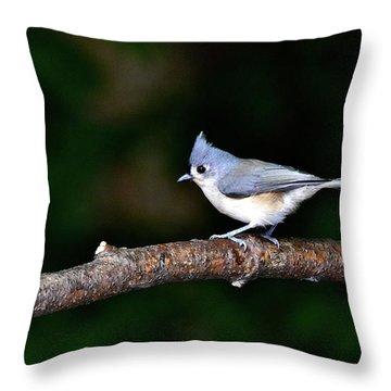 Back Yard Bird Throw Pillow