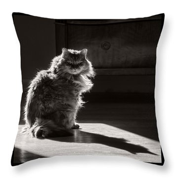 Backlight Portrait Throw Pillow