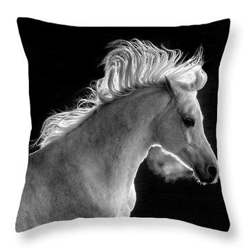 Backlit Arabian Throw Pillow