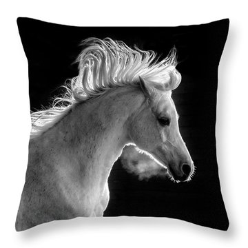 Backlit Arabian Throw Pillow by Wes and Dotty Weber