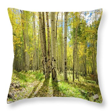 Backlit Aspen Trail Throw Pillow