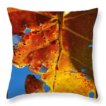 Backlit Beauty Throw Pillow