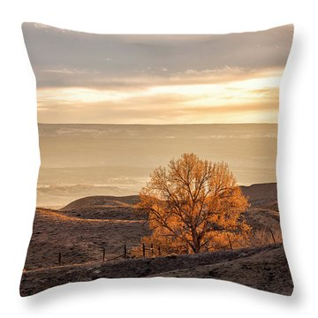 Backlit Cottonwood Throw Pillow