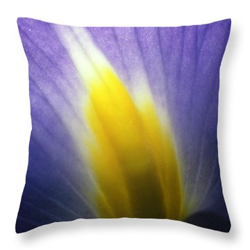 Backlit Iris Flower Petal Close Up Purple And Yellow Throw Pillow