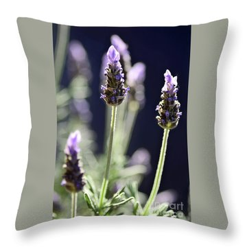 Throw Pillow featuring the photograph Backlit Lavender By Kaye Menner by Kaye Menner