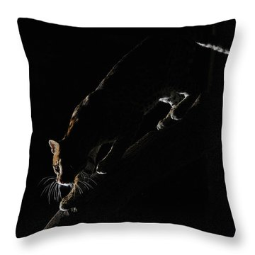 Backlit Ocelot Throw Pillow by Wade Aiken