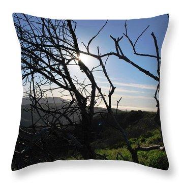 Throw Pillow featuring the photograph Backlit Trees Overlooking Hillside by Matt Harang