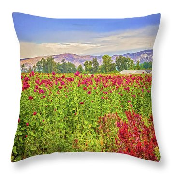 Backroad Beauty In Southern California Throw Pillow