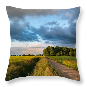 Throw Pillow featuring the photograph Backroad Between The Fields by Dmytro Korol