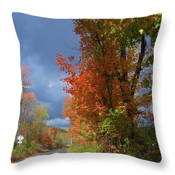 Backroad Country In Pennsylvania Throw Pillow
