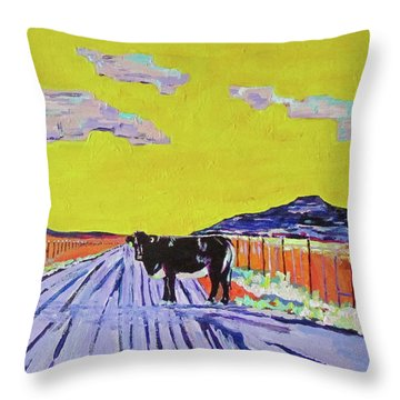 Backroads Abiquiu, New Mexico Throw Pillow by Brenda Pressnall