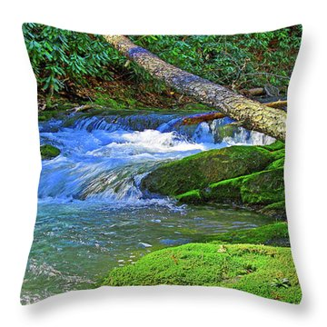 Backwoods Stream Throw Pillow