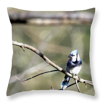 Backyard Blue Jay Oil Throw Pillow