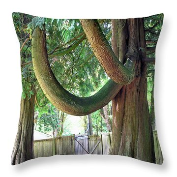 Backyard Cedar Throw Pillow