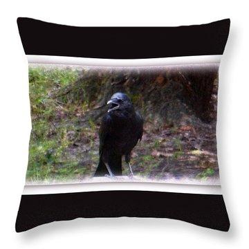 Backyard Crow Throw Pillow