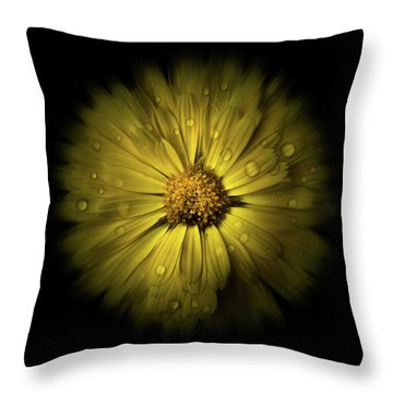 Throw Pillow featuring the photograph Backyard Flowers 10 Color Flow Version by Brian Carson