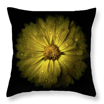 Throw Pillow featuring the photograph Backyard Flowers 10 Color Version by Brian Carson