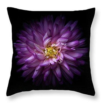Backyard Flowers 20 Color Version Throw Pillow