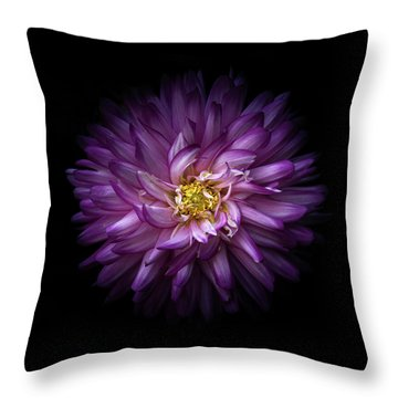 Backyard Flowers 20 Color Version Throw Pillow